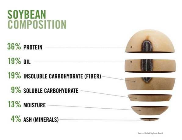 The Soybean Composition