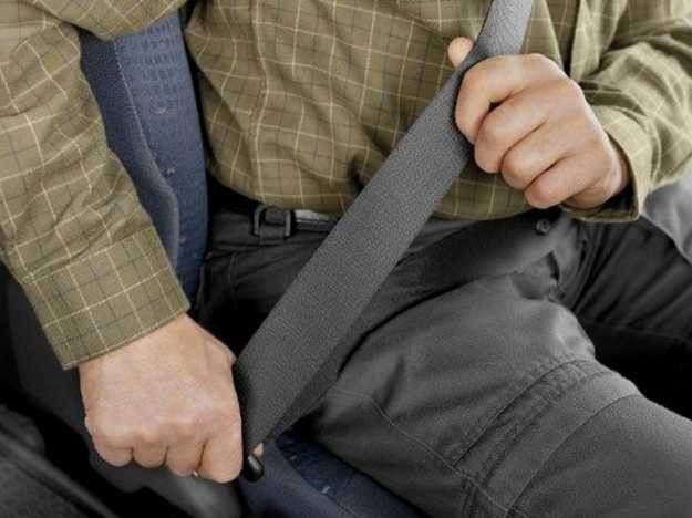 How clean is your seat belt?
