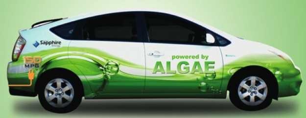 Powered by Algae