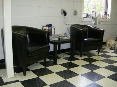 Cedar Park Auto Body
